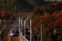 彩の季節 - PTT+.