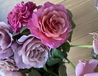 秋のバラは香りもいいですね。 - バラのある幸せな暮らし研究所