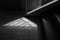 ちいさな光 - 旅する       memephoto