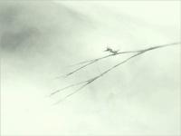《秋奇跡の枝で。2》 - 『ヤマセミの谿から・・・ある谷の記憶と追想』