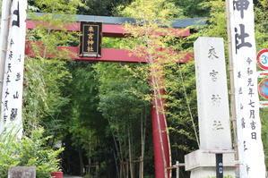 初めての...熱海「来宮神社」 - キラキラのある日々