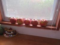 林檎が届きました。 - Tumugitesigoto4419's Blog