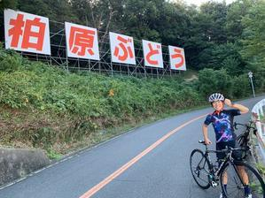 10/14(水)ぶどう坂練と筋トレ - きりのロードバイク日記