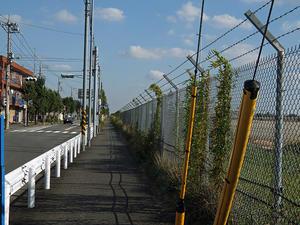 フェンスに沿って -