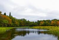 穏やかに水辺の紅葉を楽しむなら「雨宮の池」 - きれいの瞬間~写真で伝えるstory~