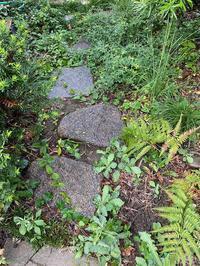 UTIさんちお庭庭石のお引越し - くのさんち