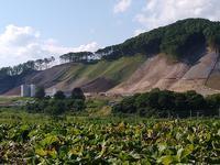 2020.08.11 厚真町で農業バイト - ジムニーとハイゼット(ピカソ、カプチーノ、A4とスカルペル)で旅に出よう