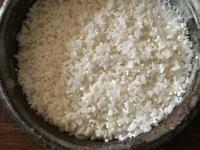 甘酒&天然もの養殖もの - 糸巻きパレットガーデン