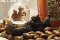 点滴堂企画展『どんぐりの森のリスの小径』 - 四季彩の部屋Ⅱ