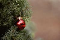 クリスマスは目前<後編>1 - ダイヤモンドは裏切らない