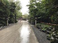 寒川神社からのモキチトラットリア - 毎日徒然良い加減
