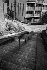 段差のある町 - photolog-ミヤコワスレ