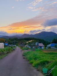 熊、猿、猪があばれる君です - 福島県南会津での山暮らしと制作