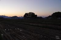明日香村奥山夕景 - ぶらり記録 2:奈良・大阪・・・