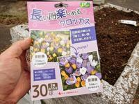 球根を植えました - 某の雑記帳