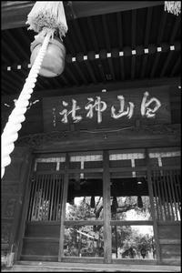 小石川・白山神社 -6 - 不 走 時 流