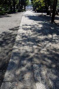 長野そぞろ歩き・千曲:武水別神社(2) - 日本庭園的生活