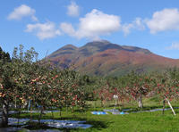 岩木山もリンゴも秋色に~♪ - 窓の向こうに
