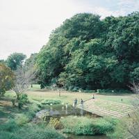 水辺で秋を四角く切りとってみたら - 相模原・町田エリアの写真サークル「なちゅフォト」ブログ!