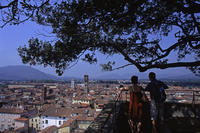 蔵出しフォト Lucca Torre Guinigi - Bicycle Touring Photo Gallery.