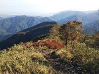 サクッとハイキング…奥美濃・小津権現山 - 山にでかける日