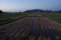 明日香村奥山3/今日の撮影 最後より 夕暮 - ぶらり記録 2:奈良・大阪・・・