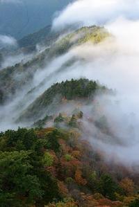 霧の流れる山稜山上ヶ岳 - 峰さんの山あるき