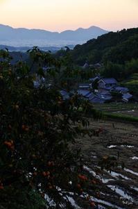 明日香村細川5/今日の撮影 最後より - ぶらり記録 2:奈良・大阪・・・