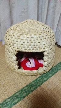 ドーム型猫ちぐらまたまた売れました。嬉しい♥ - 今猫ちぐら作成に大はまり!!          (My handmaid items and Farmer's daily life)