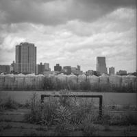 土嚢に守られた街を見る雑草 - Film&Gasoline