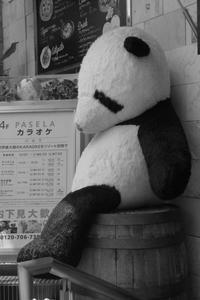 東京スナップショット4 - はーとらんど写真感