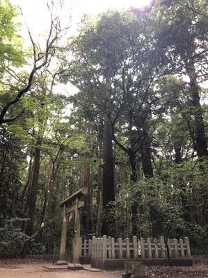 10月27〜28日、博多に滞在します。 - Re:Birth 女神の神殿