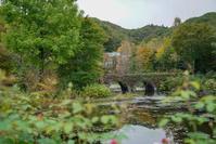 美しいのはバラの時期だけじゃない秋の軽井沢レイクガーデン - きれいの瞬間~写真で伝えるstory~