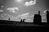今日も秋晴れ - photolog-ミヤコワスレ
