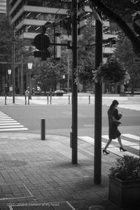足早に... - 心のカメラ   more tomorrow than today ...