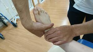 足部の評価|楔舟関節内転 - たてやま整形外科クリニック リハスタッフブログ
