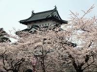 【桜で有名な青森県弘前市が今新コロで大変な騒ぎに!】 - お散歩アルバム・・寒中の静寂