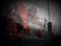 枯れ色 - 旅する       memephoto