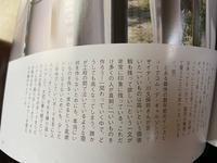 こちら - 宮崎県 宮崎市 建築設計事務所 ナガタデザイン