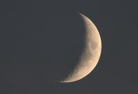 月 - ささつぶ