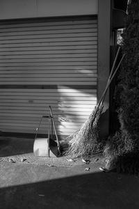 竹箒を問い詰める塵取り - Film&Gasoline
