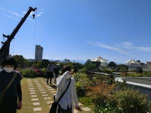 富山県庁、屋上の植物園見学 -