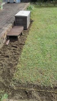 端切りしてムスカリ発見 - ウィズコロナのうちの庭の備忘録~Green's Garden~