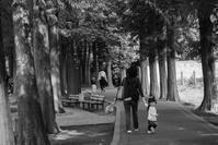 散歩の時間 - photolog-ミヤコワスレ