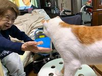 バーバ見守り隊 - ぶつぶつ独り言2(うちの猫ら2021)