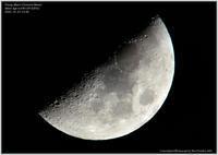 上弦の月弓張月 - 野鳥の素顔 <野鳥と日々の出来事>