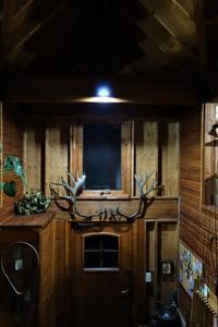 秘密木(基)地 No.9 〇△▢ - SOLiD「無垢材セレクトカタログ」/ 材木店・製材所 新発田屋(シバタヤ)