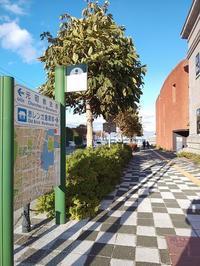 カリフォルニア・ベイビー @函館ベイエリア(末広町) - いつの間にか20年