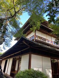 寺子屋の日々~Days in Terakoya ~ (てらこや新聞2020年10月号かめいのコーナーより) - てらこや新聞