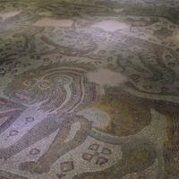 ガズィアンテップのモザイク博物館 - アクデニズ。